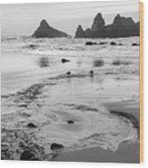 Seal Rock 0169 Wood Print