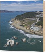 Seal Rocks At The Cliff House Wood Print
