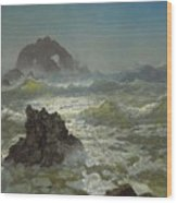 Seal_rock,_california Wood Print