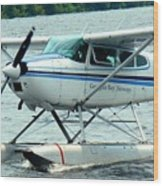 Seaplane Wood Print