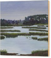 Searching Savannah Marsh By Marilyn Nolan- Johnson Wood Print