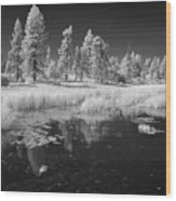 Searching The Pond Wood Print