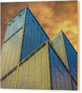 Sears Tower By Skidmore, Owings And Merrill Dsc4411 Wood Print