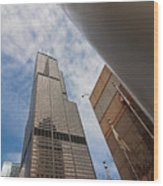 Sears Tower From Across The Street Wood Print