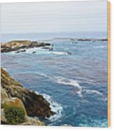 Seascape From Point Lobos State Reserve Near Monterey-california  Wood Print