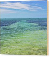 Seascape - The Colors Of Key West Wood Print