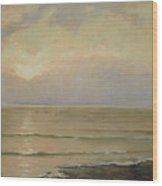Seascape View Wood Print