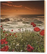 Seascape With Poppies Wood Print