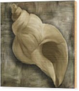 Seashell Abstract Wood Print