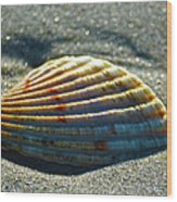 Seashell After The Wave Wood Print