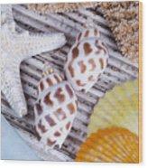 Seashells And Starfish Wood Print