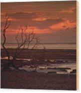 Seashore At Dawn Wood Print