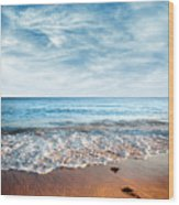 Seashore Wood Print by Carlos Caetano