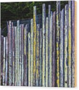 Seashore Fence Wood Print