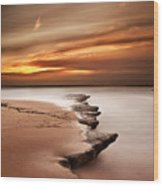 Seashore Wonders Wood Print