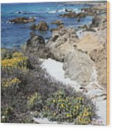 Seaside Flowers And Rocky Shore Wood Print