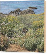 Seaside Flowers Wood Print