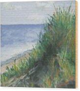 Seaside Wood Print by Ginny Neece