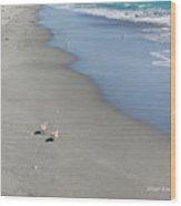 Seaside Holiday Wood Print