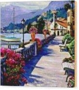 Seaside Pathway Wood Print