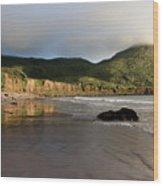 Seaside Reflections, County Kerry, Ireland Wood Print