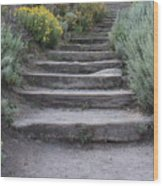 Seaside Steps Wood Print