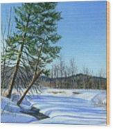 Season Of Shadows Wood Print