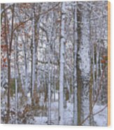 Season's First Snow Wood Print