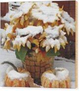 Seasons Meet And Greet Wood Print