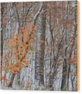 Seasons Overlapping Wood Print