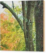 Seasons Wood Print
