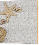 Seastar And Shells Wood Print by Joana Kruse