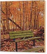 Seat To Autumn Wood Print
