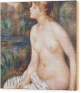 Seated Female Nude Wood Print