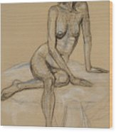 Seated Nude 4 Wood Print
