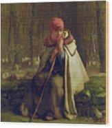 Seated Shepherdess Wood Print