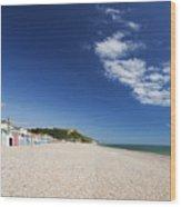 Seaton Beach Devon Wood Print