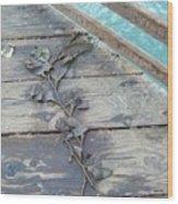 Seaweed At Rest  Wood Print