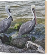 Sebastian Inlet State Park Vii Wood Print