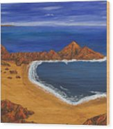 Secluded Beach Donegal Wood Print