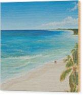 Secluded Beach Walk Wood Print