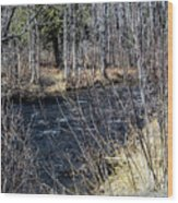 Secluded Brook Wood Print