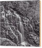 Secluded Falls - Bw Wood Print
