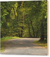 Secluded Forest Road Wood Print