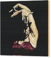 Seclusion Del Flamenco Wood Print by Richard Young