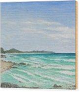 Second Bay Coolum Beach Wood Print