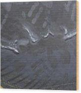 Second Lebanon War - Fragment Wood Print