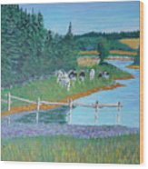 Second Peninsula Cows Wood Print