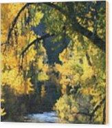 Secret Creek Wood Print