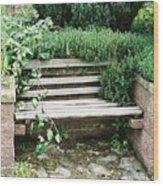 Secret Garden Bench Wood Print